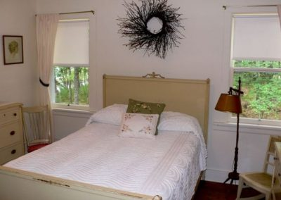 Second bedroom with lake and woods views with queen+ twin beds